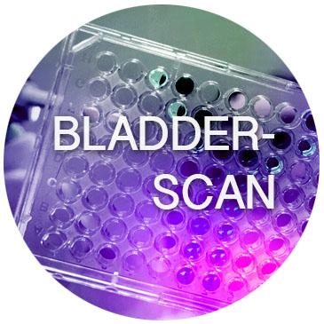 bot_bladder