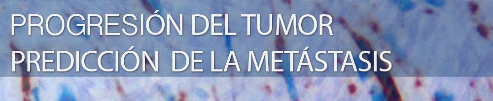 biomarcador col11A1