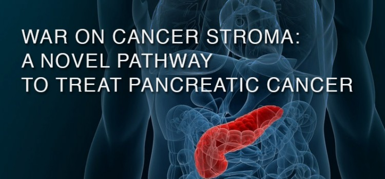 War on cancer stroma: a novel pathway to treat pancreatic cancer